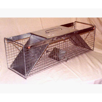 10 in. W x 36 in. L x 12 in. H Two Door Raccoon Trap